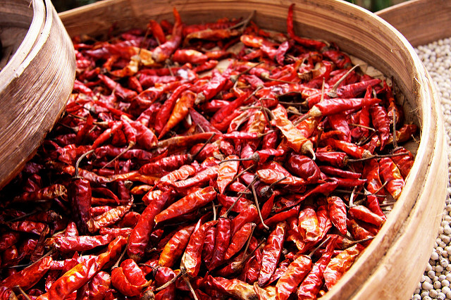 tips_for_growing_chillies_4