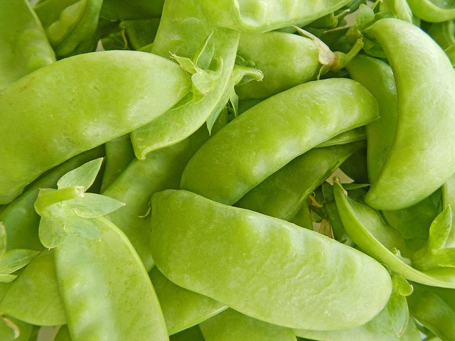 how-to-grow-snow-peas-alice-henneman